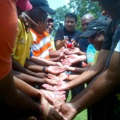 team-building-hands-activity